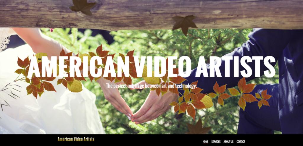 AVA website screenshot